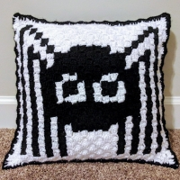 C2C Spider Pillow | Yawns And Yarn