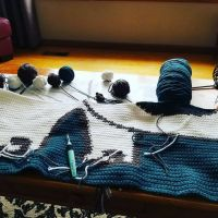 Its beginning to look like a cat! #yarnlove #crochetersofinstagram #crochetismytherapy #crochetaddict #graphghan #stitchfiddle #simonscat