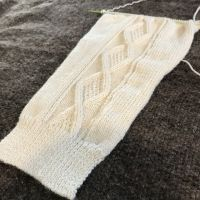 VillaWool Cabled Cardigan