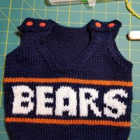 Another Bears Vest